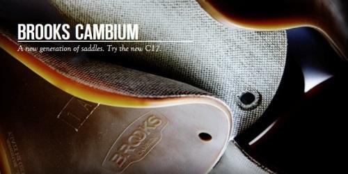 CAMBIUM.jpg
