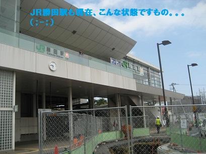 IMG_4417.jpg