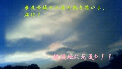 NEC_0019_20110820224041.jpg