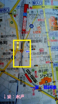 NEC_0666.jpg