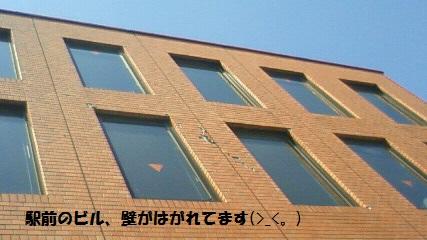 NEC_1273.jpg