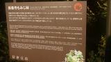 20131123修善寺39