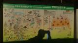 20131123修善寺38