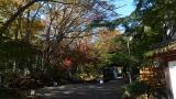 20131123修善寺99