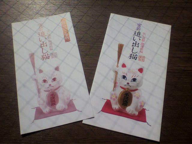 人吉の思い出・・・・「追い出し猫」福岡県若宮市