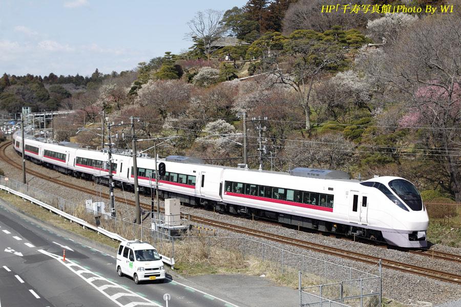 E657系フレッシュひたち(1)