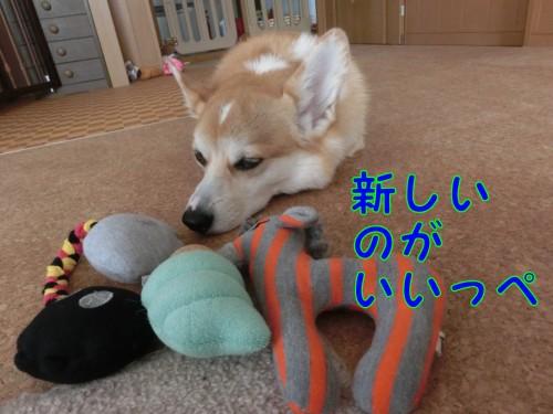 20140927_4.jpg
