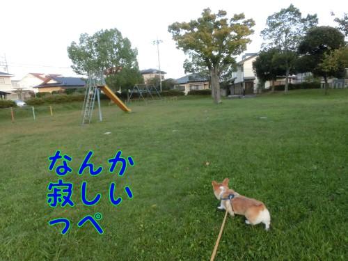 20140929_4.jpg