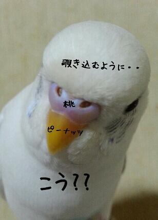fc2_2013-11-28_23-55-24-899.jpg