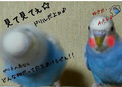 fc2_2013-12-24_06-21-46-068.jpg