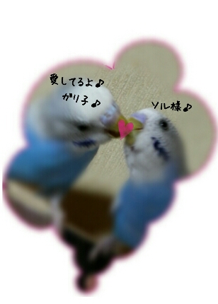 fc2_2013-12-24_23-39-36-327.jpg