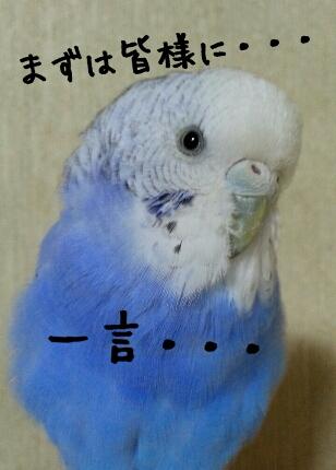 fc2_2013-12-25_22-03-24-788.jpg