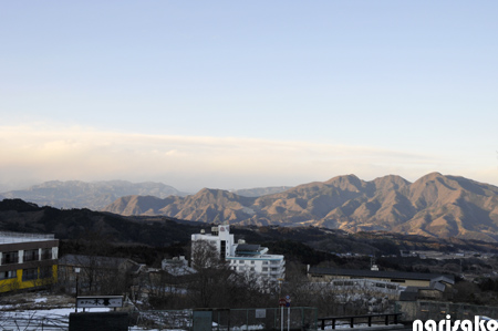 20110125b.jpg