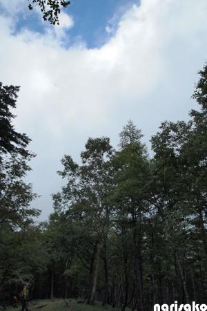 20110923n.jpg