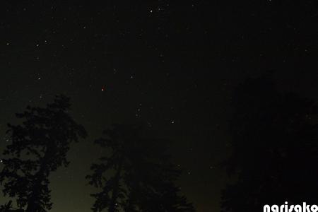 20110924b.jpg