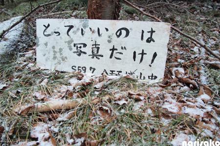 20111121_09.jpg