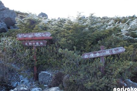 20111121_52.jpg