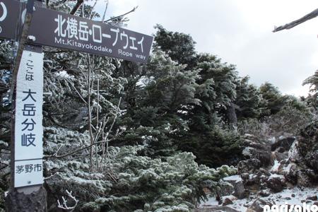 20111121_56.jpg