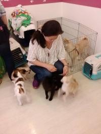 犬の保育園でイヌマミレ^^