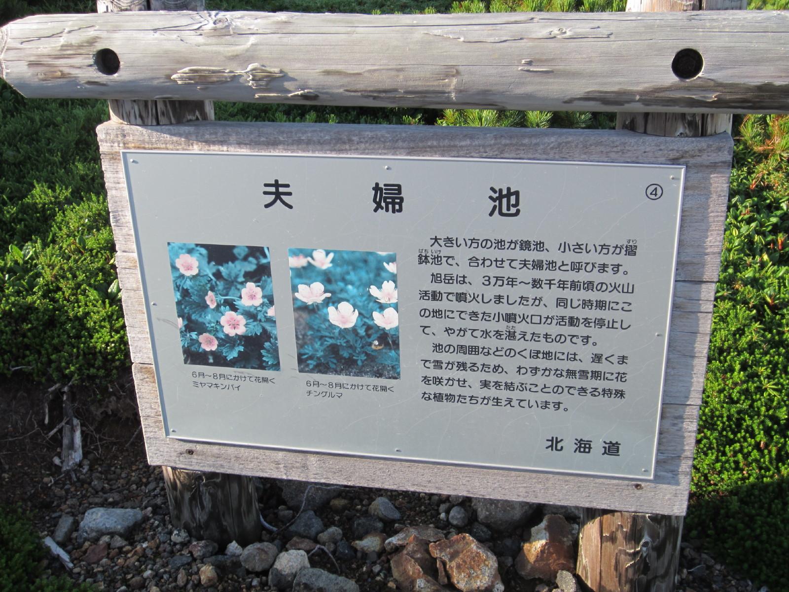 IMG_asahidake0016.jpg