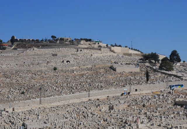 israel79d.jpg
