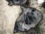 crime08plasticbag02s200px.jpg