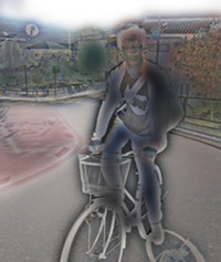 skbbicycle02n.jpg