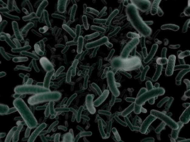 WHO「耐性菌が世界で拡大傾向にある。抗生物質の処方は必要最低限に抑えて」