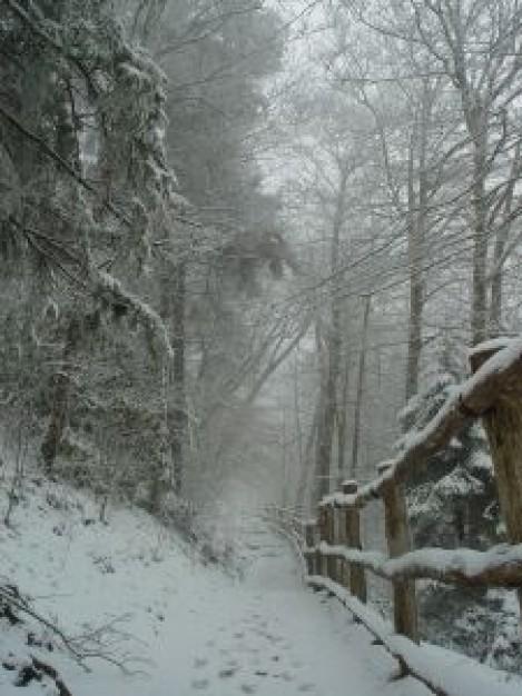 北海道で記録的大雪猛吹雪! 135年前に統計を取り始めてから最大規模
