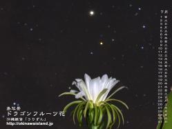 沖縄 壁紙 デスクトップカレンダー