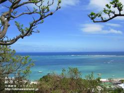 壁紙,沖縄,デスクトップカレンダー,ビーチ,海