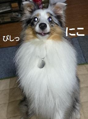 DSC_4840.jpg