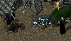 cappa02.jpg