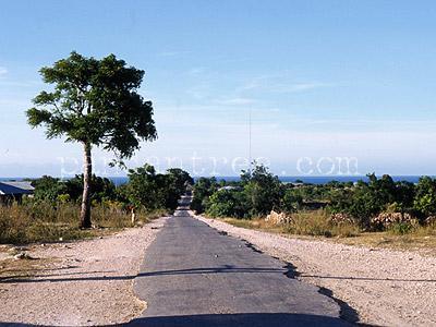 スンバ島の道
