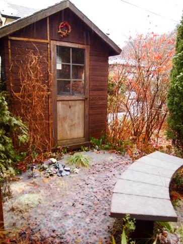 my-garden 061 (3)
