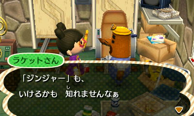 TOBIMORI_0008262.jpg