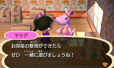 TOBIMORI_0008858.jpg