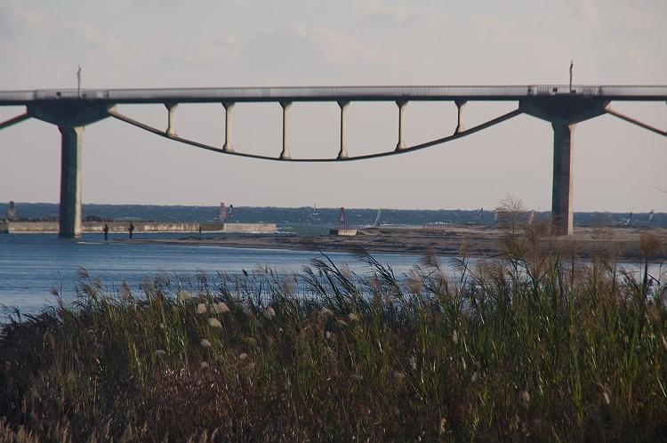 冬空とサーファーと潮騒橋