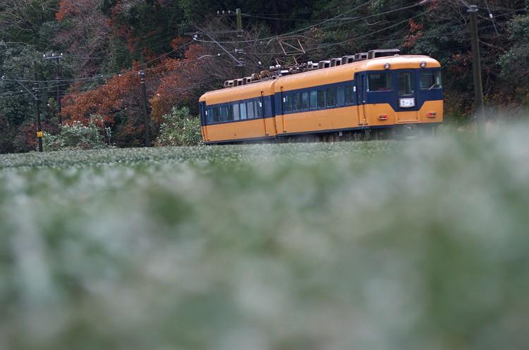 初冬の大井川鐵道