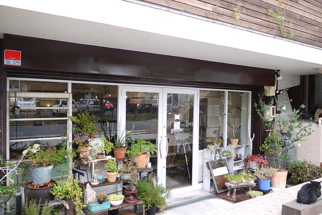 aoiku_cafe2011.jpg