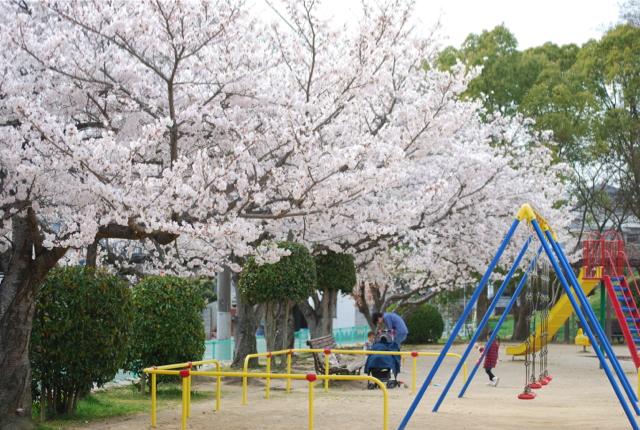 公園(変換後)