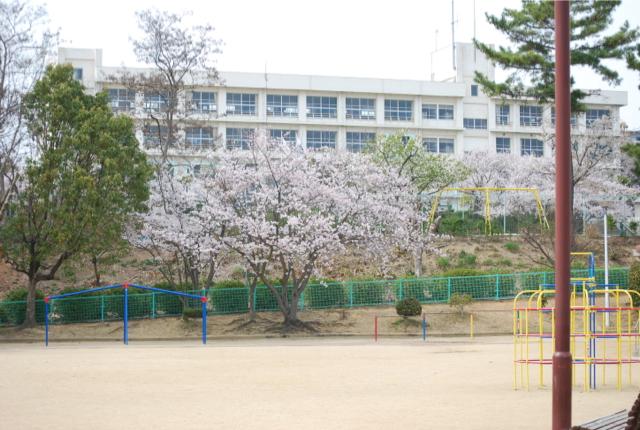 学校(変換後)