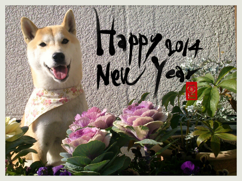 さくらから ~新年のご挨拶~ (おみくじ付き)