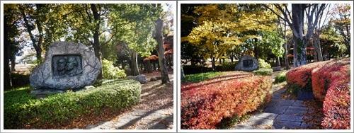 芸術の森公園で紅葉散歩を楽しむ!