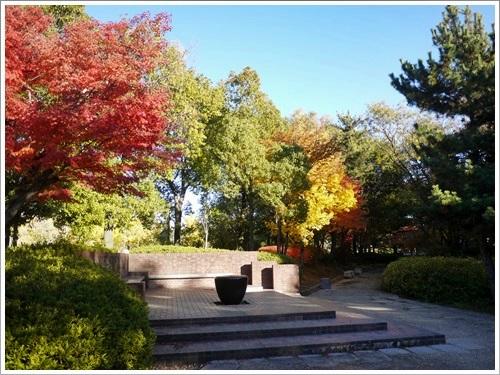 芸術の森公園24