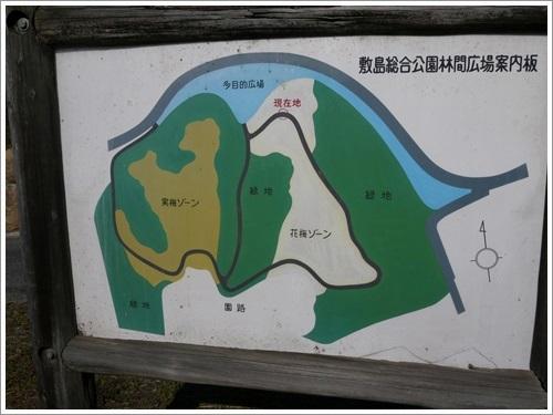 敷島総合公園林間広場で紅葉散歩