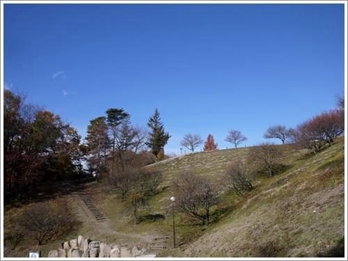 敷島公園2
