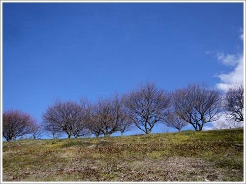 敷島公園3