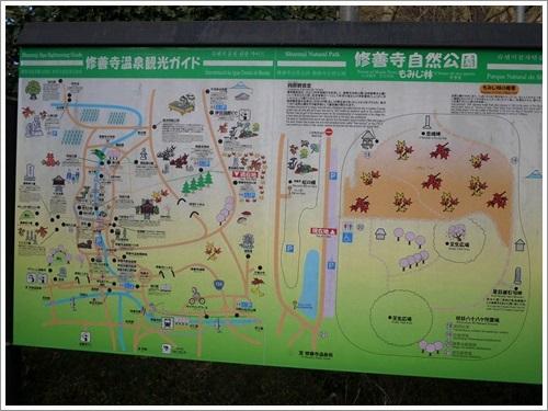 修善寺自然公園で散策