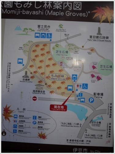 修善寺自然公園3